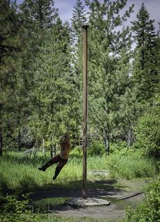 Pole swing