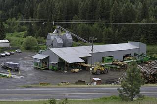 Cedar mill view