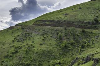 Banner Creek climb