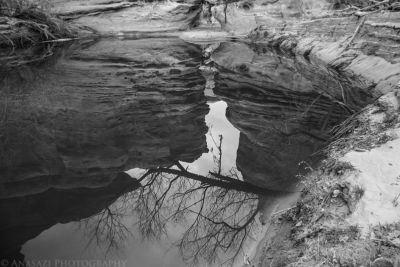 Narrows Reflection