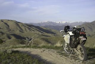Danskin Trail 301