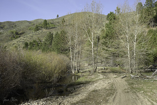Trail 402