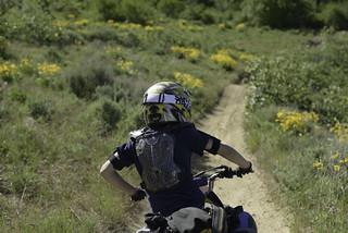 Trail Four detour