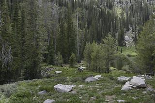 Smith Creek Lake