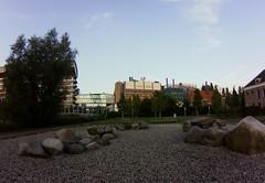 Leiden rocks