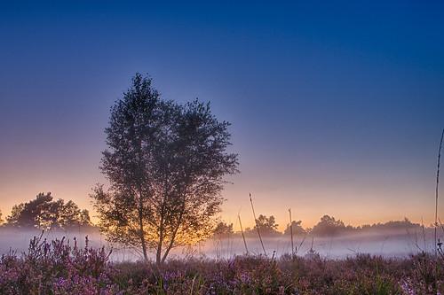 sunset netherlands nl limburg staatsbosbeheer herkenbosch npmeinweg