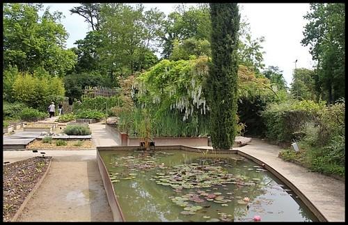 (41) Le potager de couleurs de Chaumont-sur-Loire 2012 21923393334_32e0bffe78
