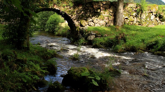 l'eau coule sous les ponts