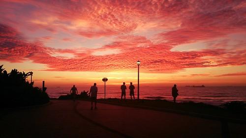 morning beach beautiful silhouette sunrise skies outdoor cellphone burning durban sonyxperia