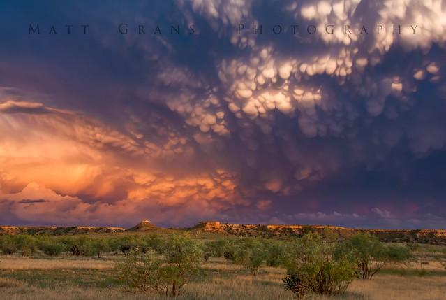 Mammatus Sky