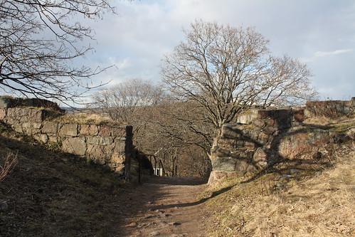 Slottsfjellet (42)
