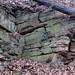 Byer Sandstone (Lower Mississippian; State Farm Quarry, Newark, Ohio, USA) 10