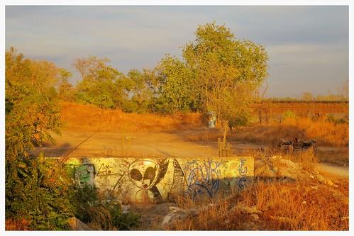 graffiti alien visitor marysville yubacity levee