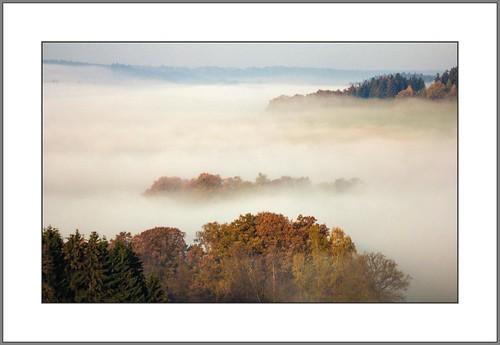 Landschaft im Nebelkleid ( Landscape in the Mist Dress)