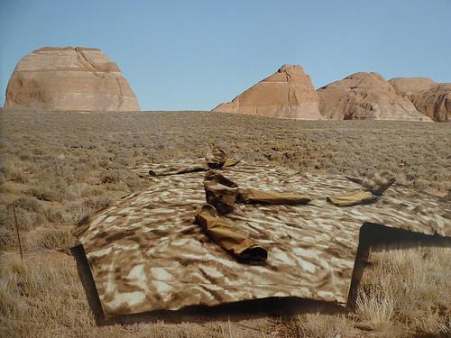 ocalafl appletonmuseumofart art desert nature flora plants grasses sandstone mountains landscape