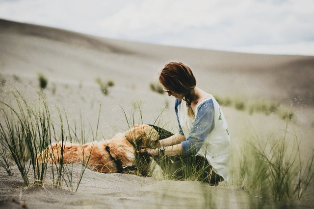 dune pets