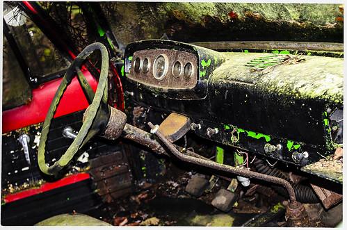 Frostpocket Mold and Fungi | by swanksalot