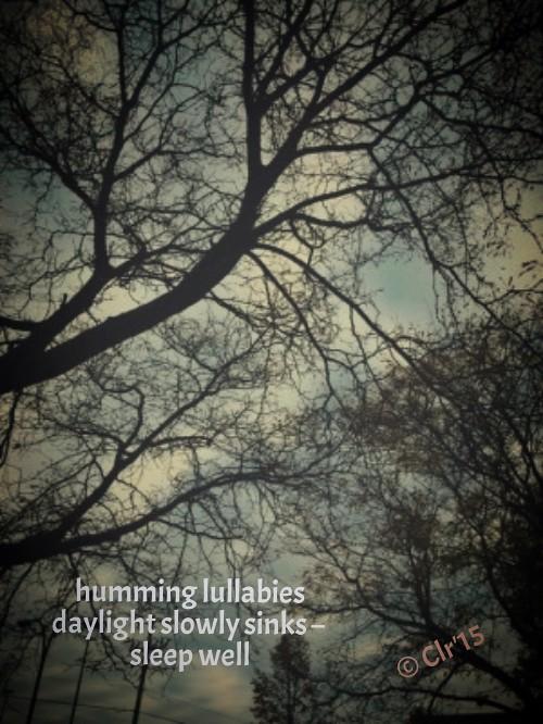 dayling slowly sinks