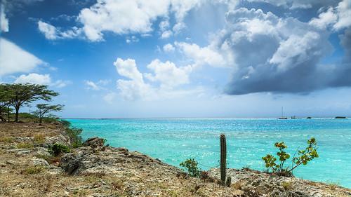 sea landscape coast aruba caribean spaanslagoenweg