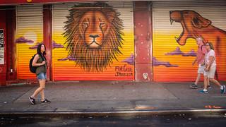 Cecil | by Braiu