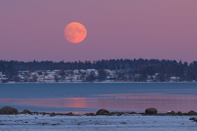 Moonrise, Ekängen Linköping Sweden, 12 Dec-2016 (IMG_5627Abr)