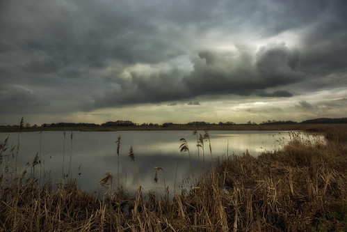 contrast clouds cloud cloudscape heaven landscape light land lake nature netherlands nederland outdoors outdoor panorama reflection sony sky thenetherlands noordholland wimvandem water wetlands golddragon ngc greatphotographers
