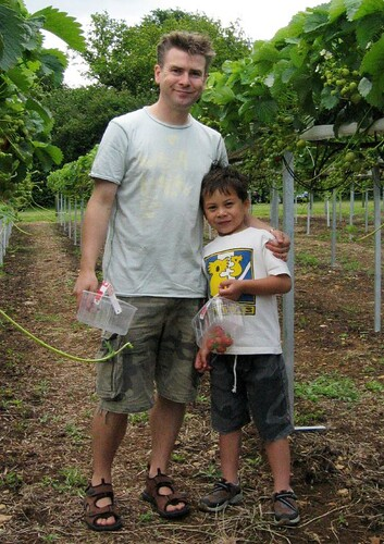 Ethan and Tony picking strawberries   by tonbut