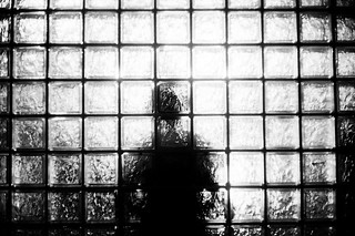 #01 night shadow
