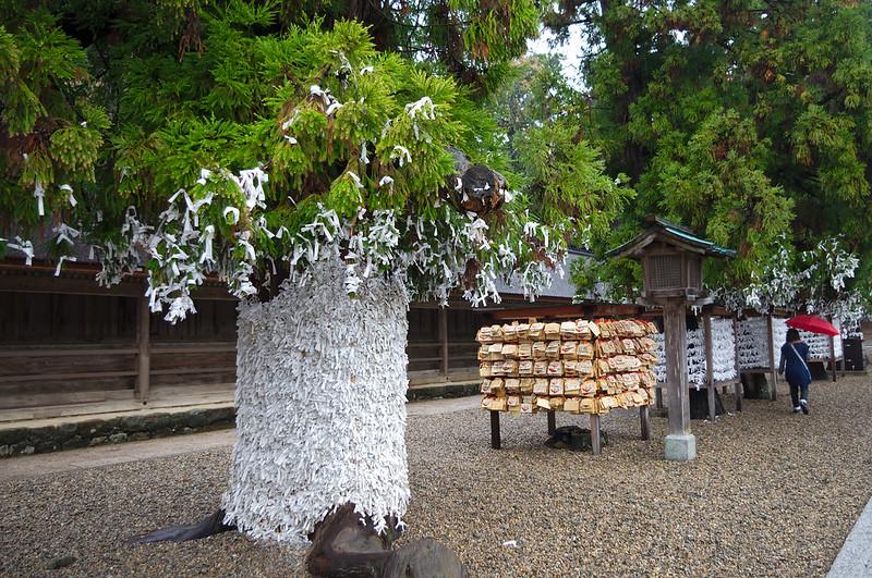 Arbre couvert d'Omikuji