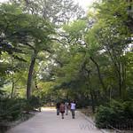 16 Corea del Sur, Jongmyo Shirne 03