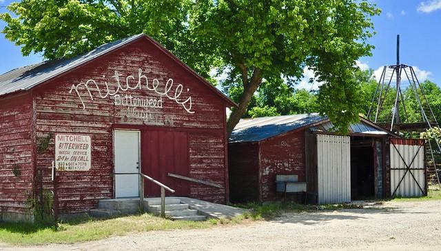Mitchell's Bitterweed Wash - Rocksprings,Texas