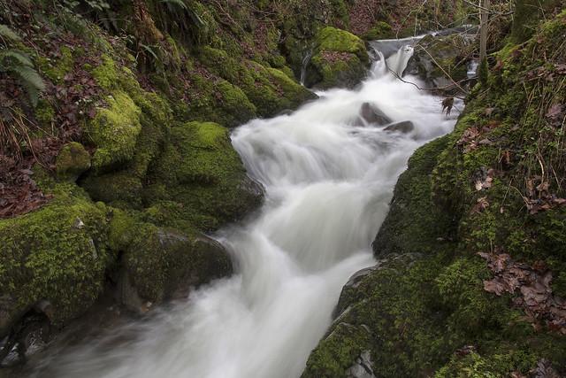 Carlingill Beck below Lummers Gill, Howgill Fells, Yorkshire Dales National Park near Sedbergh, Cumbria, UK