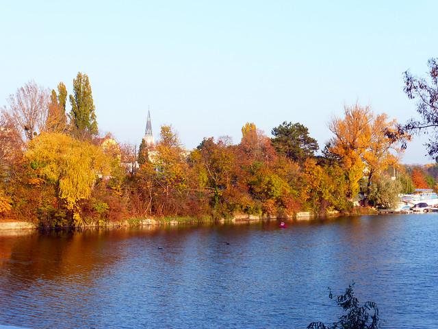 Fall Day in Floridsdorf