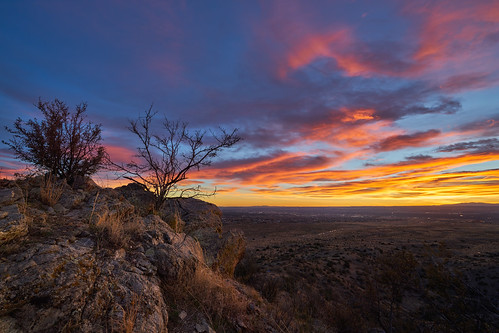 albuquerque sandia wilderness sunset sundown newmexico mountain tree nature landscape