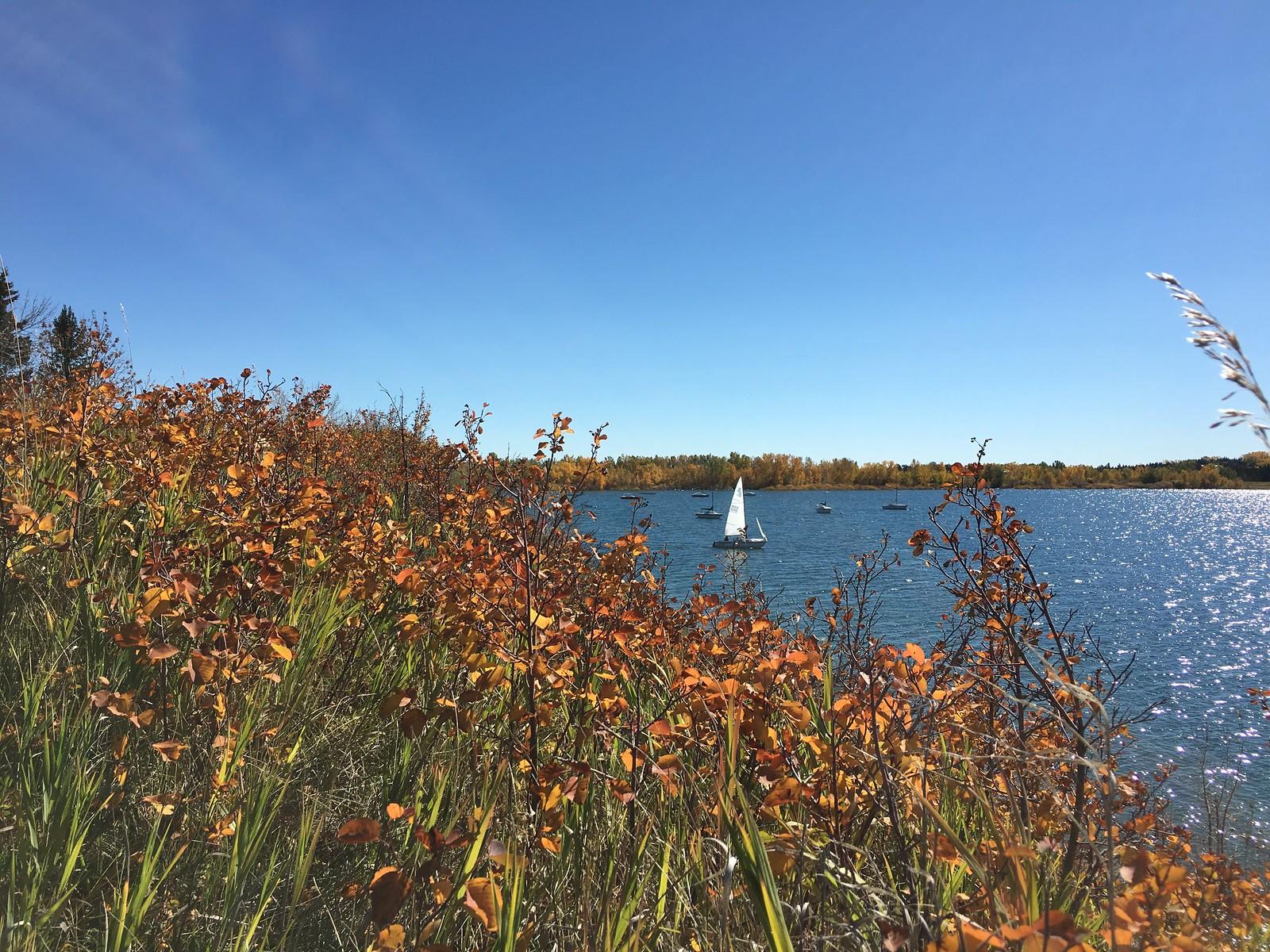 Sunday sailing, Calgary, Alberta, Canada