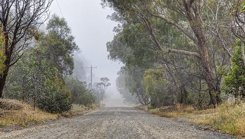 fog australia melbourne providenceroad greenvale canon24105l canon1635l canoneos6d woodlandshistoricpark