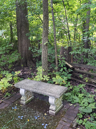 forest bench muncie minnetrista
