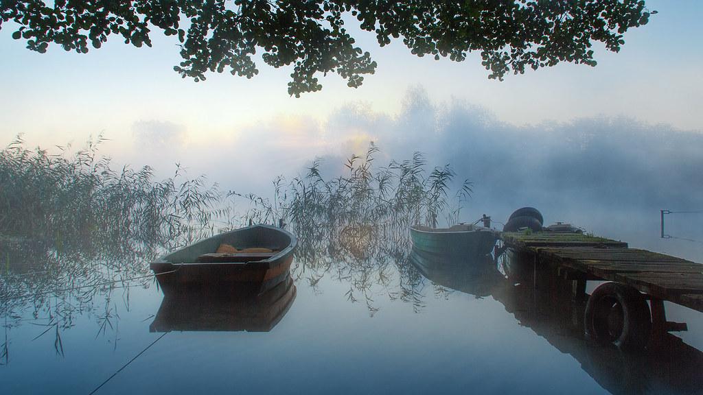 Misty view.