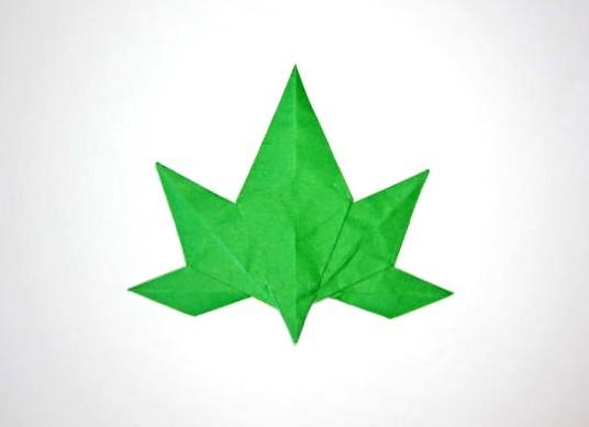 Origami Japanese Maple Leaf | Designed By: Satoshi Kamiya ... - photo#4