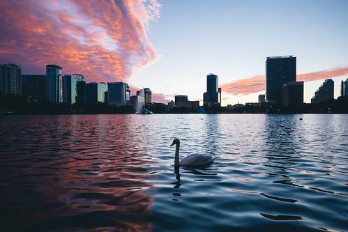 florida fujifilm lakeeola wwim12 xt1 xf14mmf28r instameet park sunset sky clouds silhouette duck fountain cityscape urban outdoor fav10 fav20 fav30