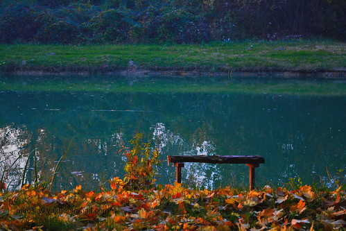 zen bench   by Miroslav Vajdić