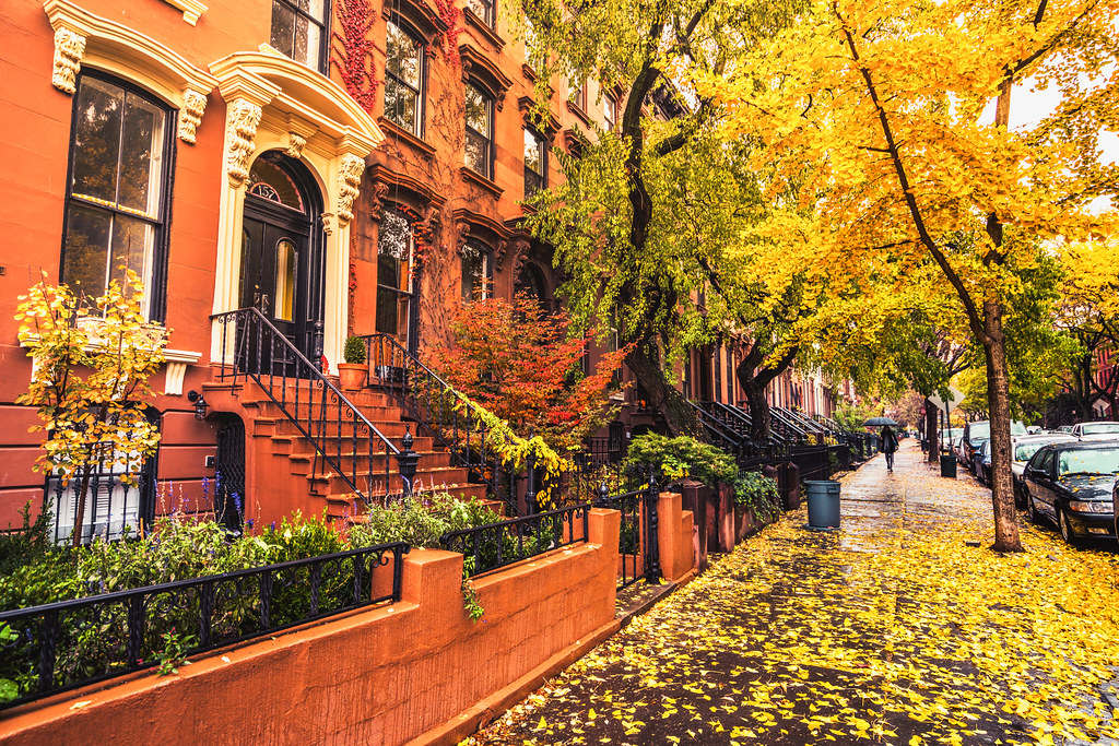 Autumn in New York | Brooklyn brownstones and townhouses ...