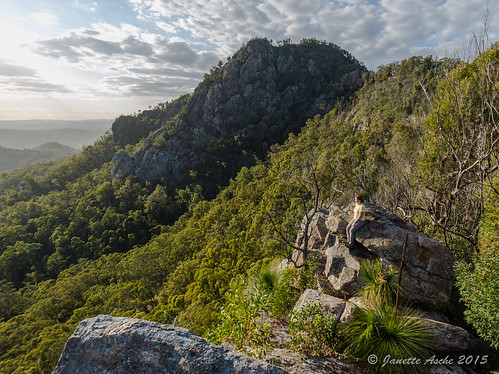 mountain australia bushwalking qld queensland bushwalk grasstree 2015 xanthorrhoea flinderspeak bushwalker flindersgoolmanconservationestate sonya7r