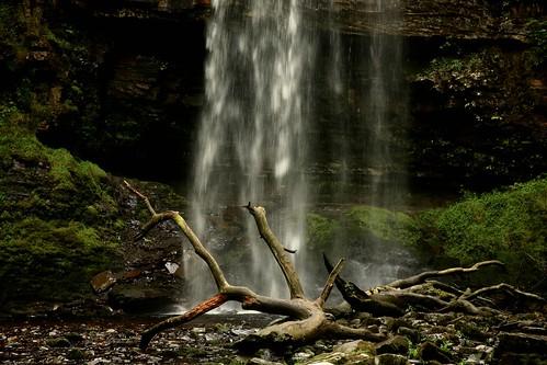 tree water wales dead waterfall breconbeacons batman nationaltrust acqua powys sgwdhenrhyd