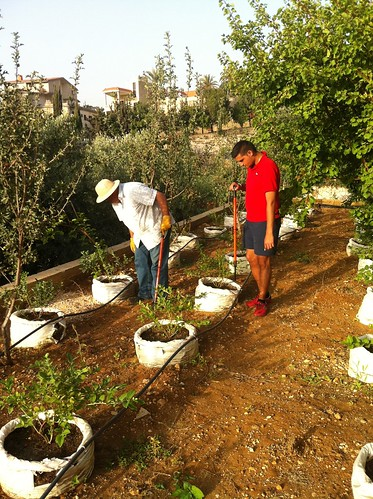 Tamim & Dad inspecting plants 2014   by toutberryfarms