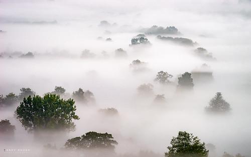 trees england mist misty landscape soft moody unitedkingdom sony gb littlewittenham a99 sonyalpha andyhough slta99v andyhoughphotography tamronsp70200di