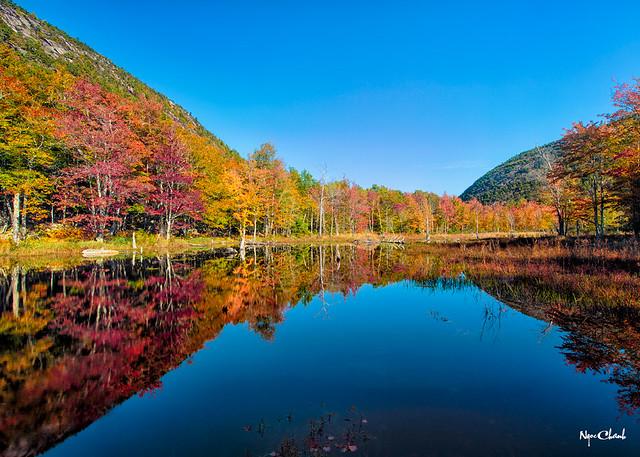 Canon Brook Pond, Maine