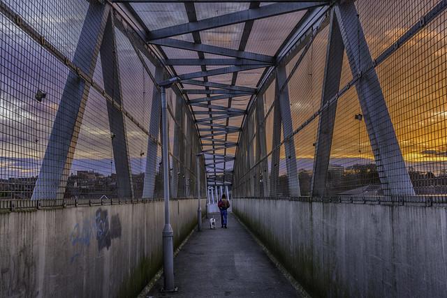 20170103_Bridge walk
