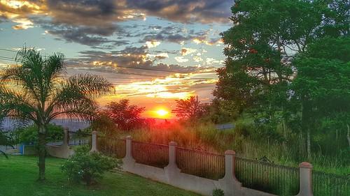 puertorico sunsets palmtrees beautifulviews galaxys6photos