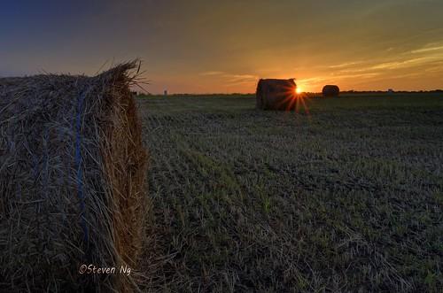 sunset hay roundrock 28mmf28 theendofsummer nikoncapturenx2 nikoncoolpixa